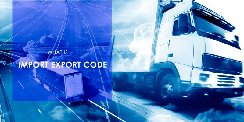 What is import and export code? IEC | India
