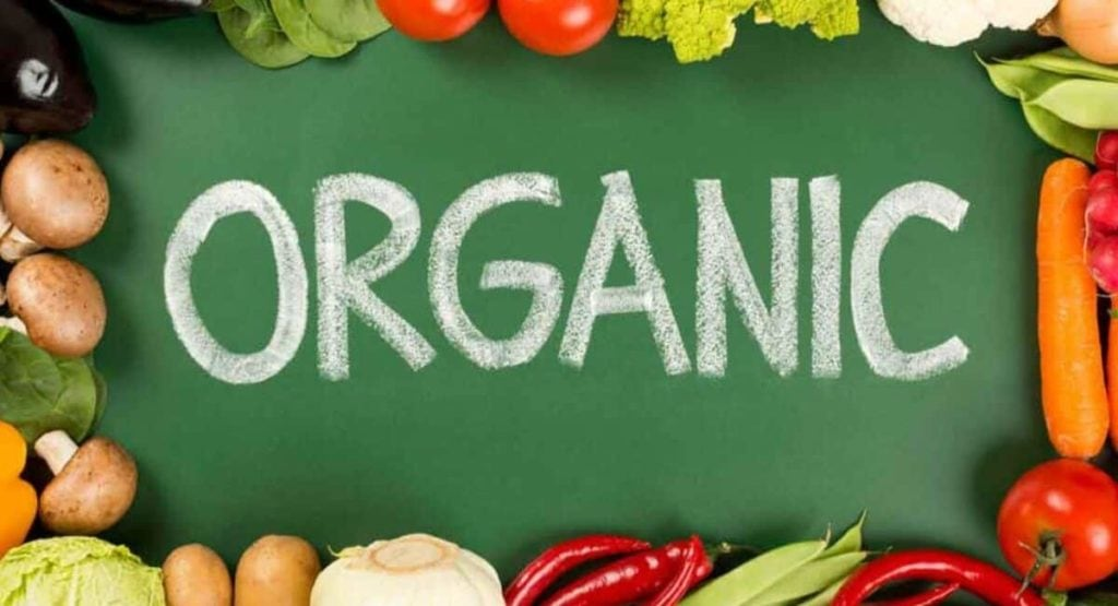 Organic Products Store | Top 10 Most Profitable Small Scale Business Ideas [2019]